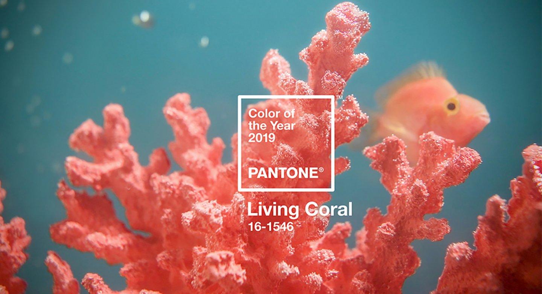 Living-Coral_Pantone_2019-kationette-fashionblog