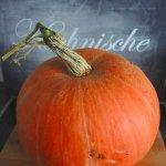 Kürbis, pumpkin, food, herbst, autumn, fall rezept